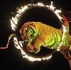 Цирки в Константиновске